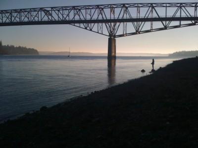 Salmon Fishing under the Agate Passage Bridge