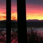 Sunrise in Kingston by Susan Henry